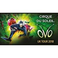 Cirque Du Soleil OVO - VIP Packages