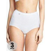 Sloggi Maxi Briefs (3 Pack), Assorted, Size 22, Women
