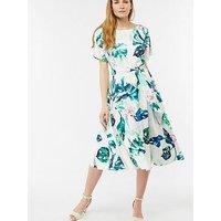 Monsoon Arianna Midi Dress - Botanical Print