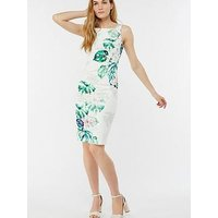Monsoon Arianna Shift Dress - Botanical Print
