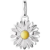 Links of London Links of London Sterling Silver & 18kt Yellow Gold Daisy Charm, One Colour, Women