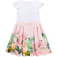 Baker by Ted Baker Girls Border Mockable Dress - Light Pink, Light Pink, Size 12 Years, Women
