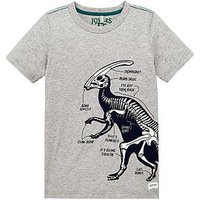 Boys, Joules Glow in the Dark Long Sleeve Tshirt, Grey, Size 6 Years