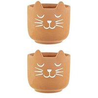 Product photograph showing Sass Belle Set 2 Cat S Whiskers Terracotta Planters