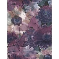 Product photograph showing Superfresco Easy Midnight Garden Wallpaper