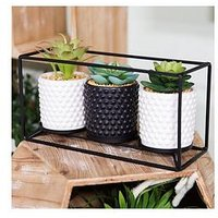 Product photograph showing Moroccan Black Metal Triple Wall Plant Holder