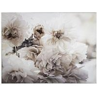 Product photograph showing Graham Brown Tranquil Blossoms Printed Canvas