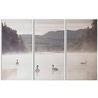 Product photograph showing Graham Brown Swan Lakeside Printed Canvas