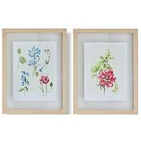 Product photograph showing Graham Brown Set Of 2 Fleur Studies Framed Floating Prints