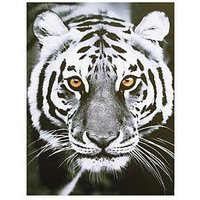 Product photograph showing Arthouse Tiger Eyes Canvas
