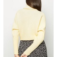 pale-yellow-roll-neck-boxy-cropped-jumper-new-look
