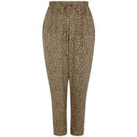 Curves Brown Leopard Print Joggers New Look