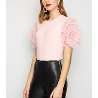 Cameo Rose Pale Pink Ribbed Mesh Sleeve Top New Look