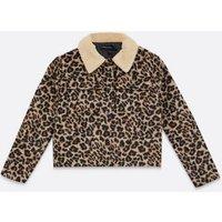 Wednesday's Girl Brown Leopard Print Teddy Collar Coat New Look