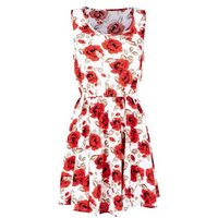 Mela-White-Floral-Dress-New-Look