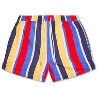Blue Vertical Stripe Swim Shorts New Look