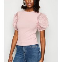 Cameo Rose Pale Pink Floral Mesh Sleeve T-Shirt New Look