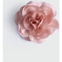 Pale Pink Hair Corsage New Look