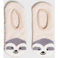 Camel Sloth Super Soft Ballet Slipper Socks New Look
