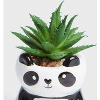 Black Double Panda Planter New Look