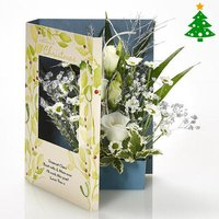 Mistletoe and Holly - Mistletoe Gifts