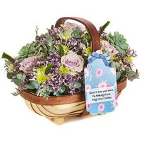 Mulberry Cream - Flowers Gifts