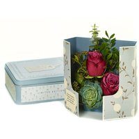 Radiant Roses - Romance Gifts