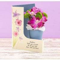 Orchid Grace - Flowercard Gifts