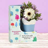 Potted Posy - Flowercard Gifts