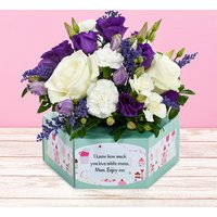 Purple Pirouette - Flowercard Gifts