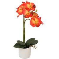 Orchidee im Keramiktopf, ca. 45 cm