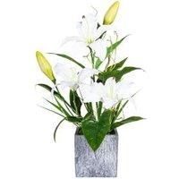 Lilienarrangement weiß, 50 cm