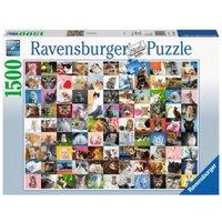 Puzzle 1500 Teile, 80x60 cm, 99 Katzen