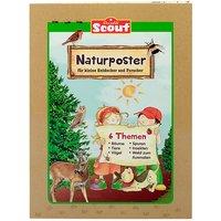 Buch - Scout Naturposter kleine Entdecker und Forscher, 6 Poster  Kinder