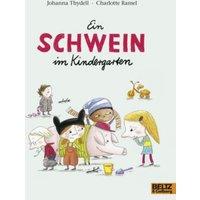 Buch - Minimax: Ein Schwein im Kindergarten