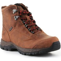 Ariat  Trekking shoes  Berwick Lace Gtx Insulated 10016229  womens Walking Boots in Brown