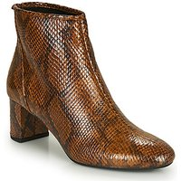 André  LEADERS  women's Low Ankle Boots in Brown