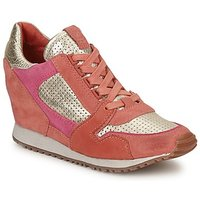 Ash  DEAN BIS  women's Shoes (Trainers) in Gold