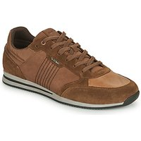 Geox  EDIZIONE  men's Shoes (Trainers) in Brown