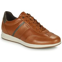 Geox  AVERY  men's Shoes (Trainers) in Brown