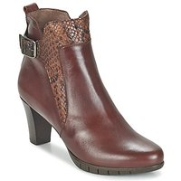 Wonders  SAVODIA  women's Low Ankle Boots in Brown