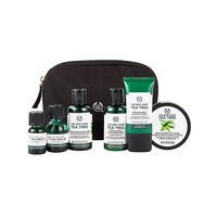 The Body Shop Tea Tree Collection