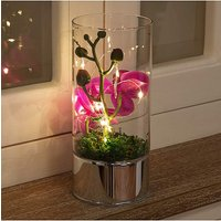 Glass Tube With Purple Flower & Lights