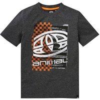 Animal Tabo Boys T-shirt
