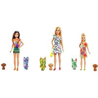 Barbie Birthday Surprise Sister & Pet.