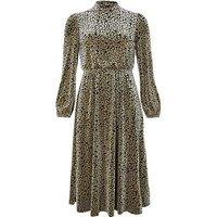 Monsoon Kylie Leopard Velvet Dress