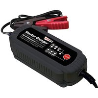 Streetwize Smart Charger 3.8amp