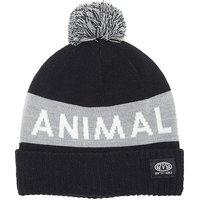 Animal Boys Tibor Beanie Bobble Hat