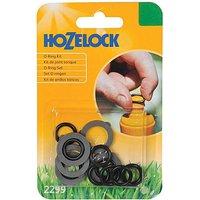 Hozelock Spare O Rings & Washers Kit