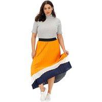 Border Print Sunray Pleat Maxi Skirt